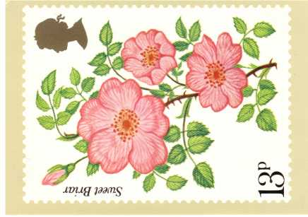 view larger image for PHQ No.16 (1976) - Roses<br/>Set of four